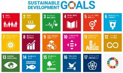 SDGsは17のゴール・169のターゲットで構成されている(外務省パンフレットより)